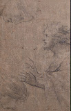 Sheet with Studies: A Male Half-Figure in Profile and Two Female Heads by Eustache Le Sueur - Genre Drawings from Hermitage Museum