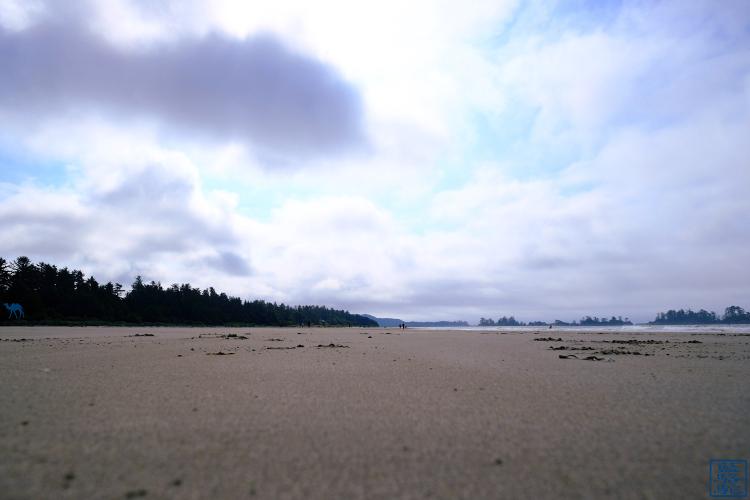 Le Chameau Bleu - Blog Voyage Tofino Canada - Mckenzie beach à Tofino - Plage du Canada