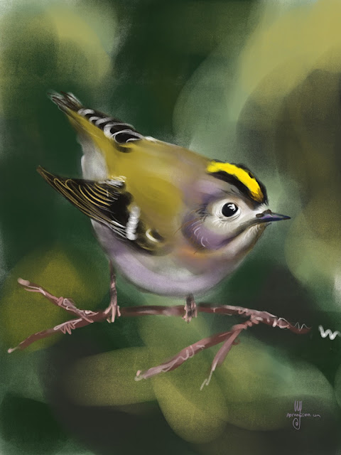 Goldcrest bird painting by Artmagenta