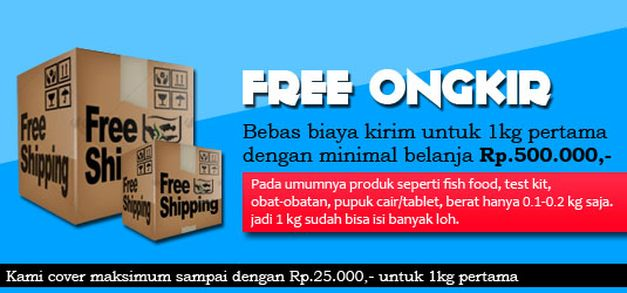 strategi-free-ongkir