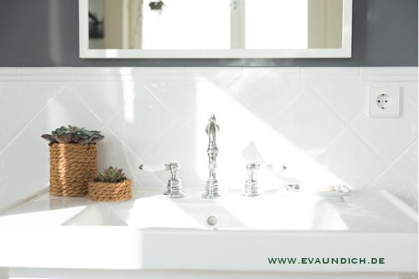 eva und ich sukkulenten braucht das badezimmer. Black Bedroom Furniture Sets. Home Design Ideas