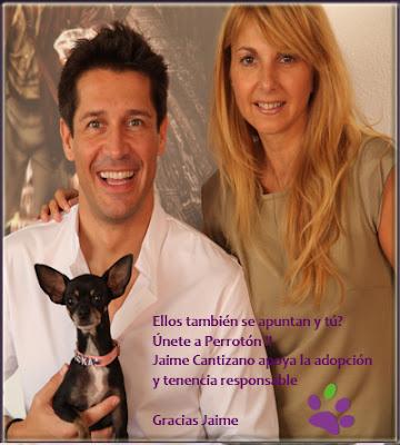 """""""Perrotón Madrid 2012"""". Celebrities unidos por su amor por las mascotas."""