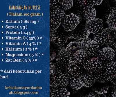 nutrisi buah hamlam