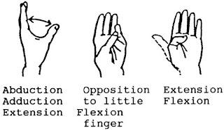 ROM ibu jari dengan gambar