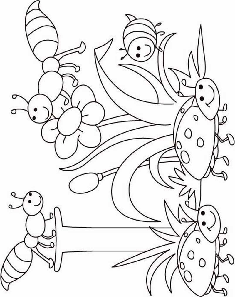 Gambar Download Gambar Mewarnai Jahe 83 Serangga Animasi Sapawarga