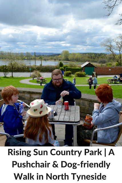 Rising Sun Country Park | A Pushchair & Dog-friendly Walk in North Tyneside