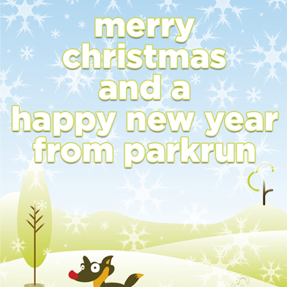 Christmas Parkrun.Fibre Runners Bromley Parkrun Christmas Traditions