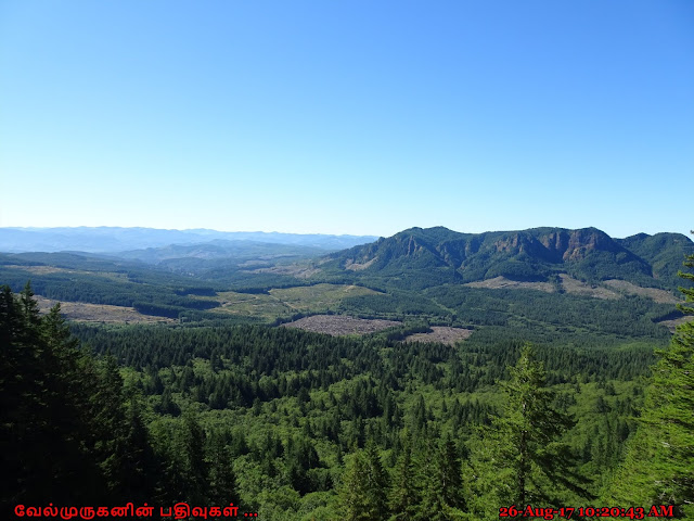 Saddle Mountain State Natural Area
