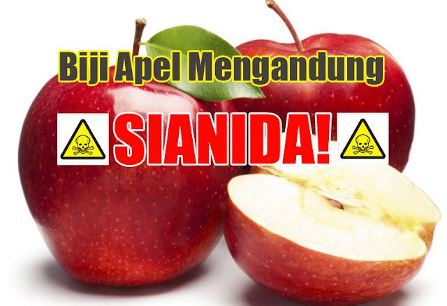 biji-apel-mengandung-sianida