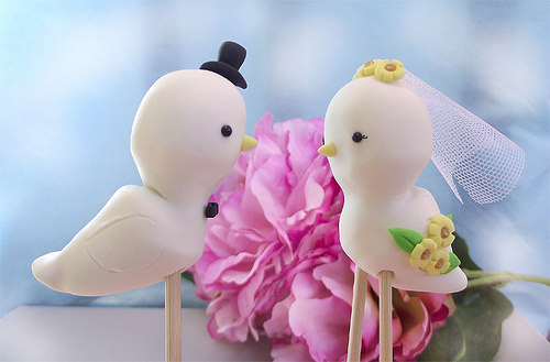 Valentine S Day Tips And Tricks Cute Love Birds