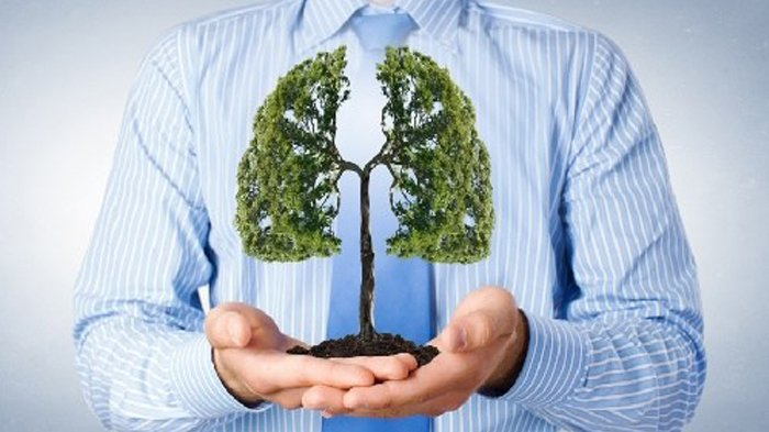 Cara Membersihkan dan Menyehatkan Paru-paru Secara Alami