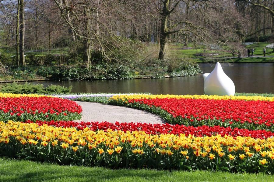 Tulipanes rojos y amarillos Keukenhof 2019 Flower Power