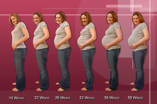 PREGNANCY (HAMAL OR MUBASHRAT) ~ INFOTAINMENT