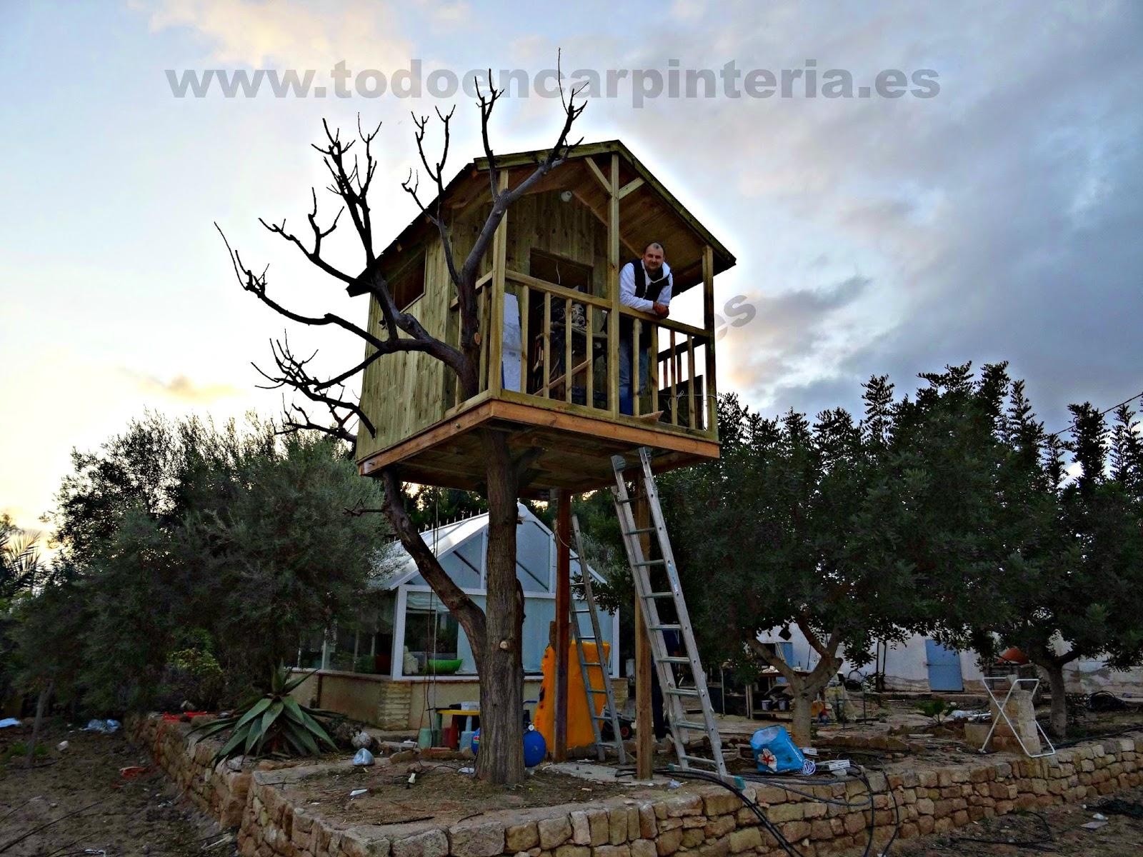 Vista general de la casa en el árbol.