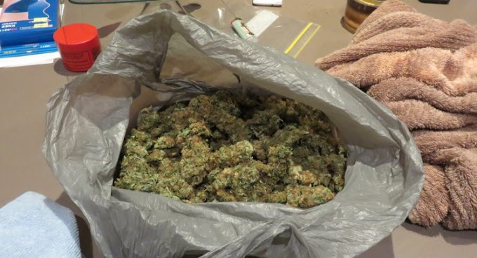 Man Caught With 1,013.0 Grams Of Cannabis Remanded