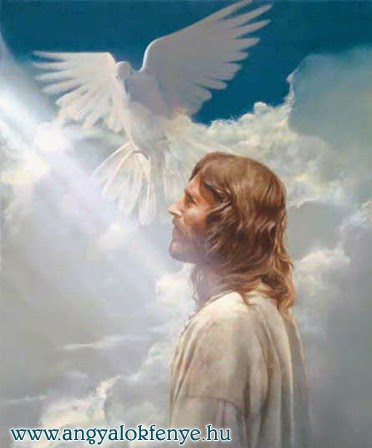 Jézus üzenetei: Tisztulási folyamat/Emelkedés (2014.nov.23.)
