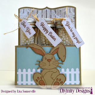 Stamp Sets: NCC Hippity Hoppity, Divinity Designs Test Tube Tag Sentiments 3  Custom Dies: Test Tube Trio, Fence Border, Bunny, Paper Collection: Romantic Roses, Shabby Pastels