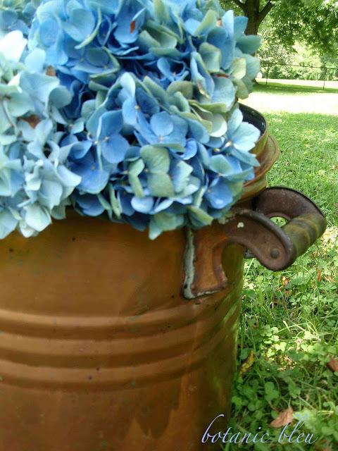Blue hydrangeas fill an antique copper pot