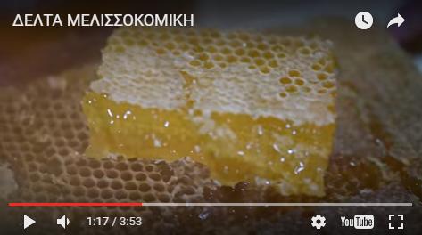 Δείτε το πανέμορφο βίντεο της ΔΕΛΤΑ ΜΕΛΙΣΣΟΚΟΜΙΚΗΣ