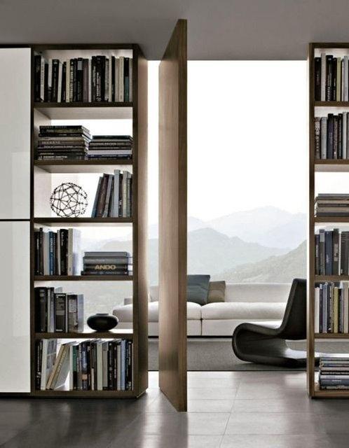 bookshelf+wall+and+pivot+door