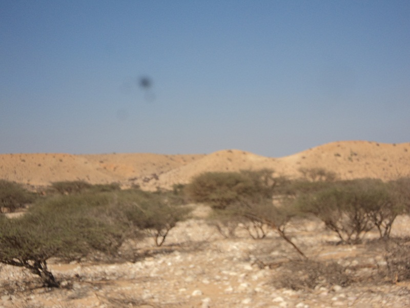 Baargaal administration appeals humanitarian agencies to support drought hit people in the region