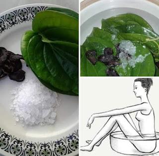 Cara Mengobati dan Mengatasi Keputihan/Bau tak Sedap/Becek pada Miss V dengan Herbal