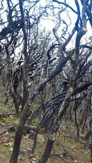 bolong foto tips rute pendankian puncak gunung bawakaraeng