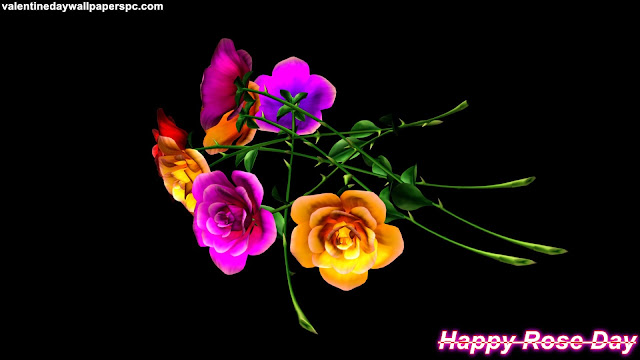 Rose Day Colorful Wallpaper