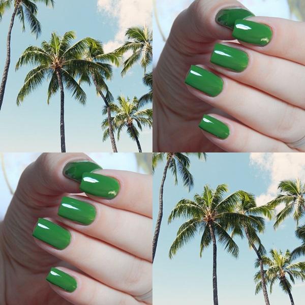 verde-palmeira-da-colorama