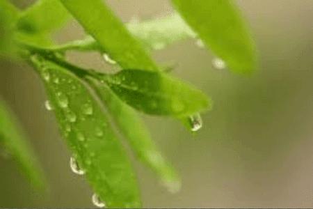 Kumpulan  Puisi Tentang Hujan Gerimis
