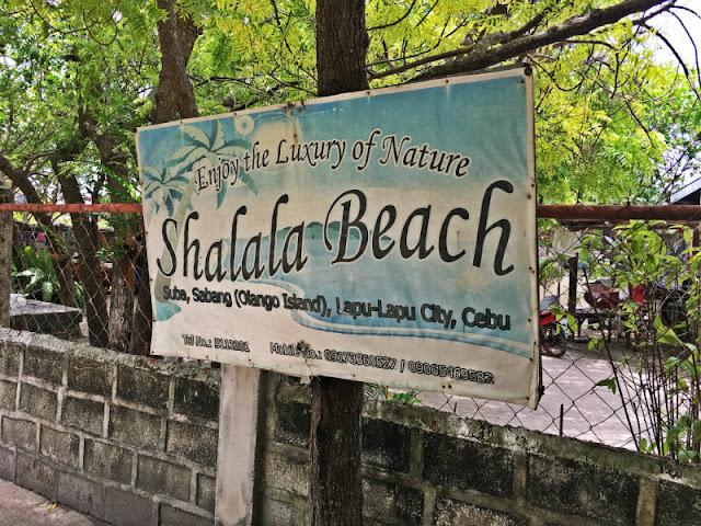 Shalala Beach Resort Olango Island Numbers to Call