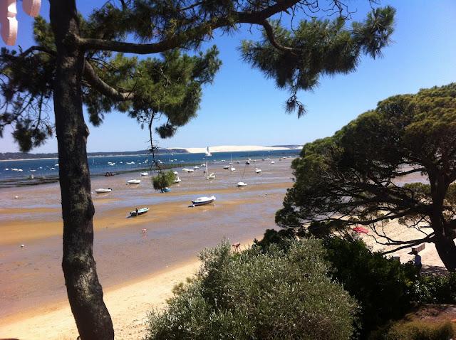 Les pins maritimes du Cap Ferret - Blog beauté Les Mousquetettes