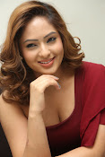 nikisha patel new sizzling photos gallery-thumbnail-15