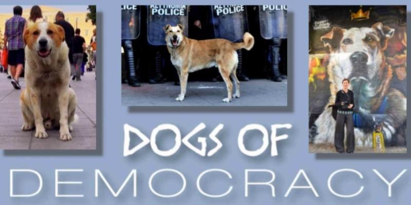 Το ντοκιμαντέρ για τα αδέσποτα σκυλιά στην Αθήνα της κρίσης (βίντεο)