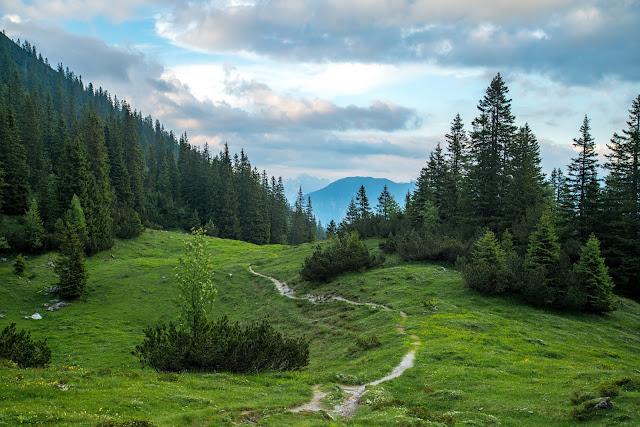 Wanderung auf die Mondspitze  Brandnertal Bürserberg  Wanderparkplatz Tschengla  Alpe Rona  Alpe Furkla 13