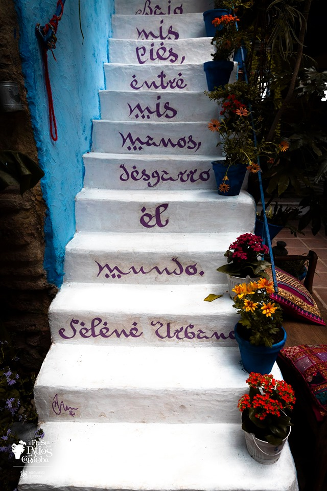 pared azul y escalera blanca con macetas