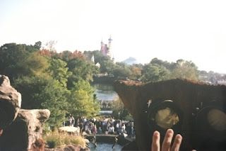 The Magic Kingdom 25th Anniversary Cinderella Castle cake seen from the top of Splash Mountain