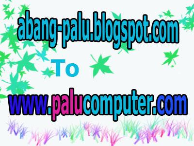 palucomputer