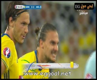 اهداف مباراة السويد و بلجيكا | يورو 2016 Belgium-Sweden