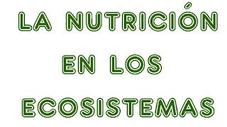 https://capitaneducacion.blogspot.com/2018/11/4-primaria-ciencias-de-la-naturaleza-la.html
