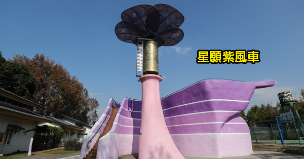 台中新社|星願紫風車|大型音樂盒|紫斑蝶休息站|冬天賞櫻花和楓葉