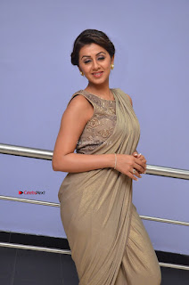 Nikki Galrani in Saree 005.JPG