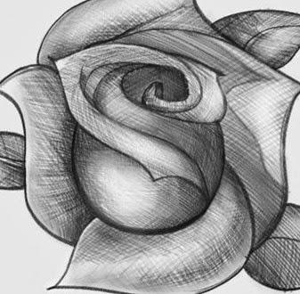 C mo dibujar una rosa paso a paso mimundomanual - Como secar una rosa ...