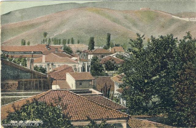 Дел од градот гледан кон југ. Разгледница издадена околу 1910 год.