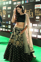 Shu Aiyappa Spicy Black CHoli Low Rise Ghagra ~  Exclusive 11.JPG