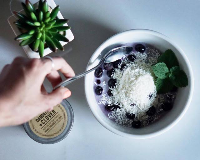 Frozen Blueberry Coconut Delight