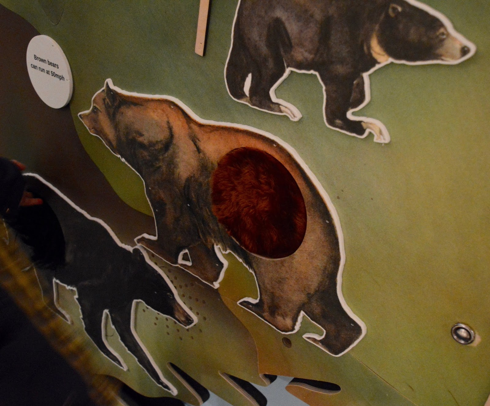 Seven Stories Newcastle | Parking & Admission plus Bears! Exhibition Review - bears sensory wall