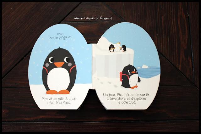 e aventure antarctique pingouin ballon