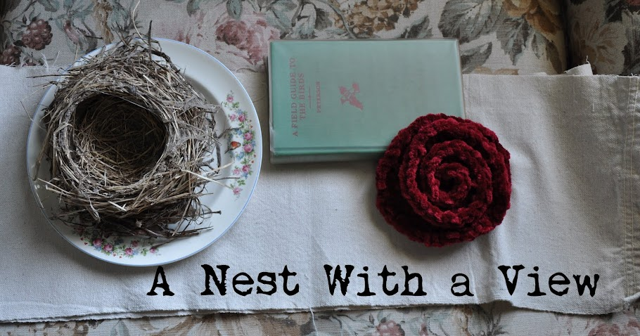 Robin Thomas: A Nest With A View
