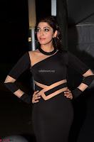 Pranitha Subhash in a skin tight backless brown gown at 64th Jio Filmfare Awards South ~  Exclusive 018.JPG